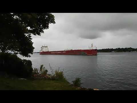 Laker west bound on the St Lawrence River at Alexandria Bay NY..