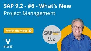 Sap Business One Version Project Management