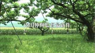 山崎真実主演・内田伸輝監督作品『ふゆの獣』 http://www.makotoyacoltd...