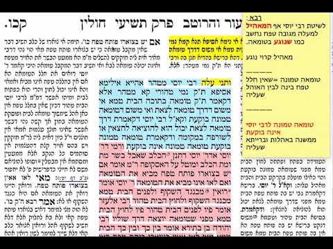 חולין קכו 126 שלישי כ״ו אדר ב׳ תשע״ט Daf yomi chullin daf 126 קכו