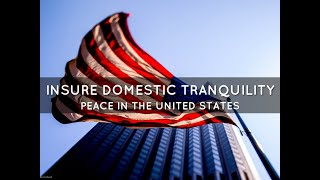 Insure domestic Tranquility: Riots, Protest, Insurrection & the Constitution - Save Our Republic!#44