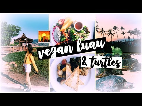 BEST Maui Vegan Food, Grand Wailea Luau, Turtles, & Twin Falls on the Road to Hana! ♡