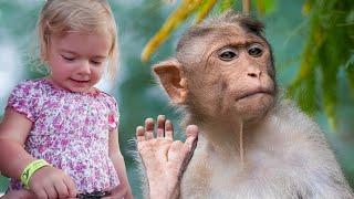 Reactia Anabellei la intalnirea cu maimuta!!! Anabella show