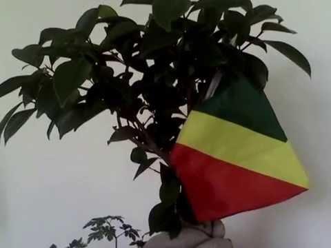 Peuple et Nation: la République du Congo Brazzaville, une et indivisible !