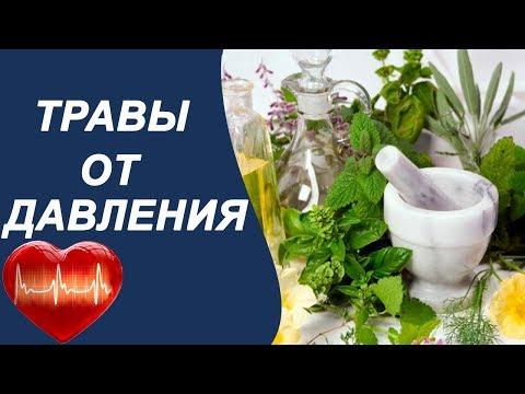 Травы понижающие давление, народная медицина