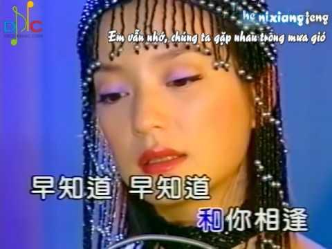 Vicki Zhao  赵薇 Zhao Wei  Yan Yu Meng Meng 烟雨濛濛i