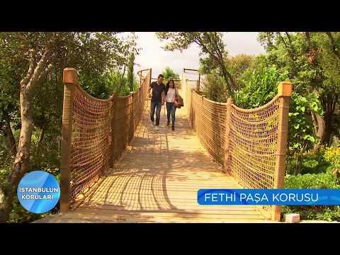 İstanbul'un Koruları | Fethi Paşa Korusu