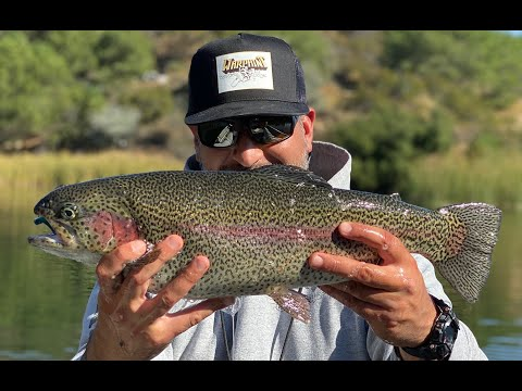 Dixon Trout Season Opener 2019 - Catching Trout On Various Baits