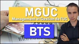 MÉTHODOLOGIE pour réussir l'épreuve de MGUC en BTS MUC | Management et Gestion de l'UC