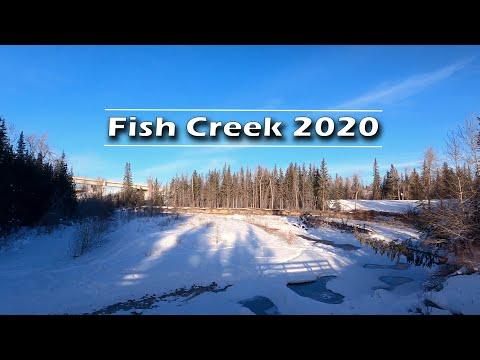 Fish Creek Provincial Park Winter 2020 | Journey Alberta