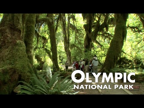 Olympic National Park 3-minute Tour