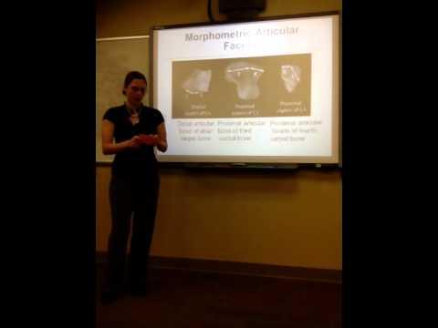 Group 2 Biology Seminar Presentation