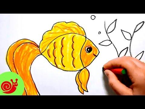 Как нарисовать золотая рыбка