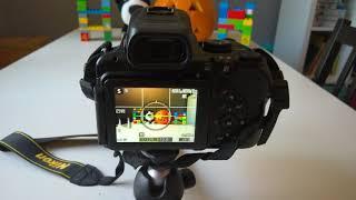 Nikon Coolpix P1000 Lesson 1 White and Black Copy