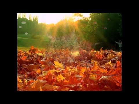 Music video Света - Как чужие