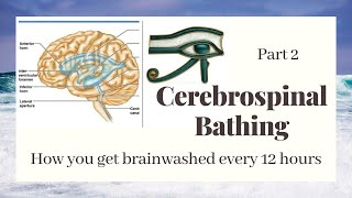 Cerebrospinal bathing pt 2