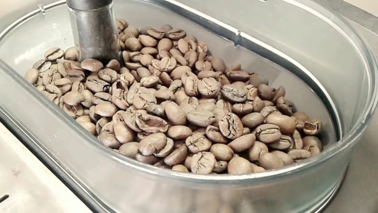 Кофе в зернах Santo Domingo.Чисто Доминиканский Кофе - YouTube