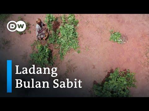 Cara Petani Burkina Faso Beradaptasi dengan Kondisi Cuaca