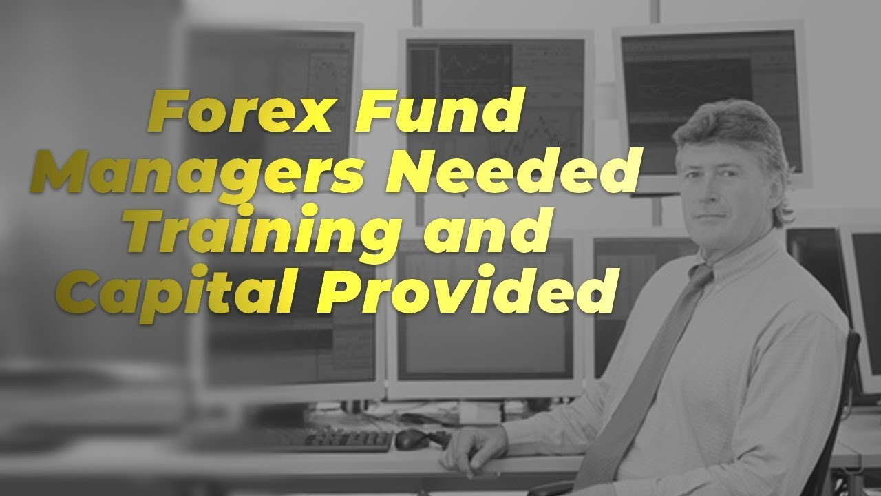 Forex manager wanted