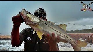 Pescaria Aquafort Camocim - CE - Chuva de Flechas Parte II