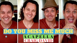 Craig David - DO YOU MISS ME MUCH (Acapella Cover)
