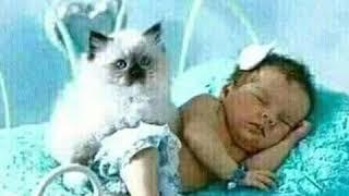 Raat name DU chokhe Ghum Ja Re
