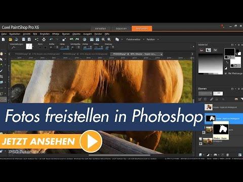 Corel PaintShop Pro Tutorial -  Fotos freistellen mit der 'intelligenten Auswahl'