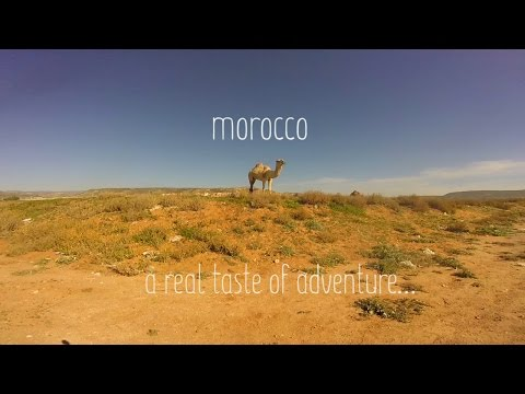 Randaddy's Real Taste of Morocco