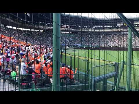 Japanese Highschool Baseball Championship