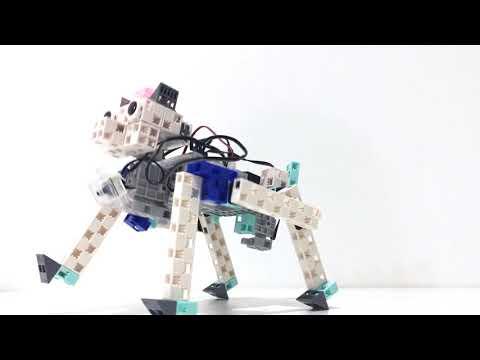 Présentation École des Robots Douai