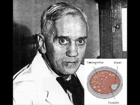 Does anyone know how the discovery of Penicillin was accidental?