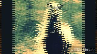 Фотографии лошадей с интернета🐴🐎🦄