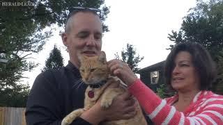 Meet Cairo, the Lexington cat with a bar tab