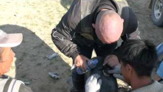 Marek Michel 3.2 Mongolia