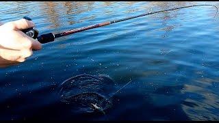Рыбалка  на щуку  р. Ингул 14 02 16 открытие сезона 2016 щука