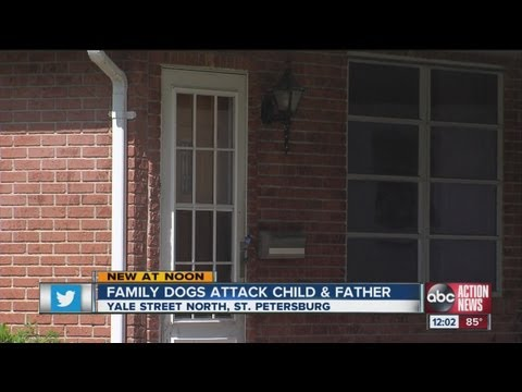 Family dog attacks 4-year-old