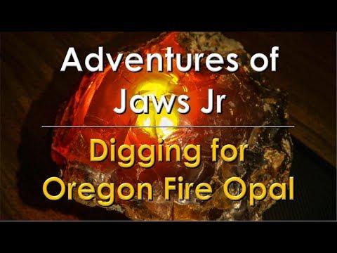 Digging For Oregon Fire Opal     Rockhounding