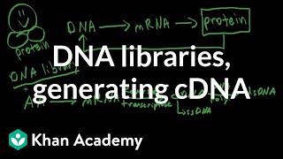 dna libraries generating cdna   biomolecules   mcat   khan academy