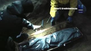 Polsat Viasat History - Medieval Dead - 15 secs (TXN)