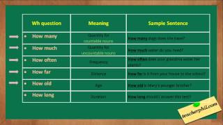 learn about wh questions in english grammar