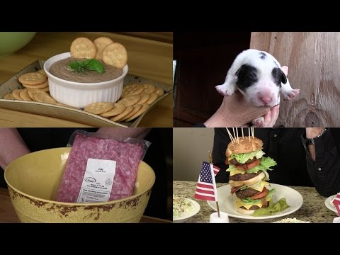 Pork and Puppies (Episode #337)