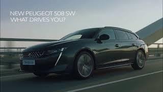 """А я вот езжу на Пежо и не..."" | Peugeot 508 SW 2019"