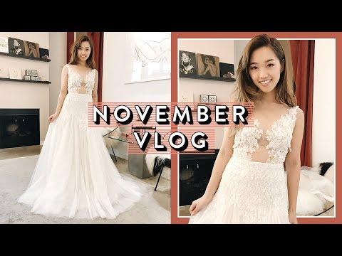 Trying On Wedding Dresses   November Vlog Pt. 1