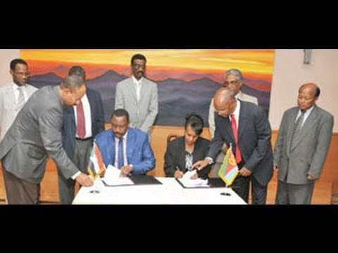 Eritrea and Sudan health ministers sign cooperation agreement | Eri-TV