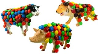 Names And Sounds of Cow,Pig And Tiger/Fun Candy M&M's Play/Colorful Baby Toddler Video/Kids Z Fun