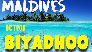 Остров Бияду, Мальдивы / Biyadhoo Island, Maldives