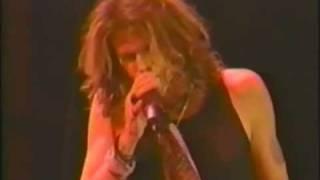 Aerosmith en Vivo . Festival Rock Im Park Ger 97 . 3 de 7
