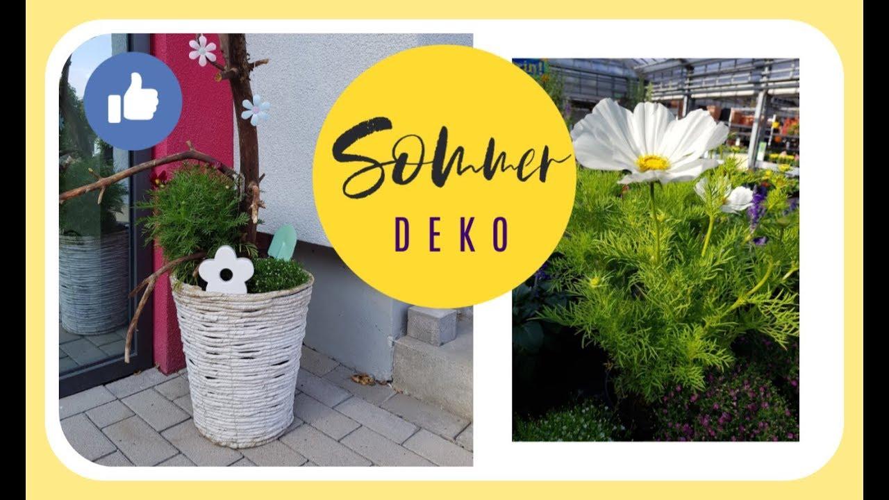 SOMMERDEKO für den Garten schnell und einfach selber machen mit Cosmea KatisweltTV