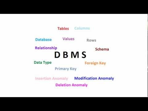 Database Management System: Basics