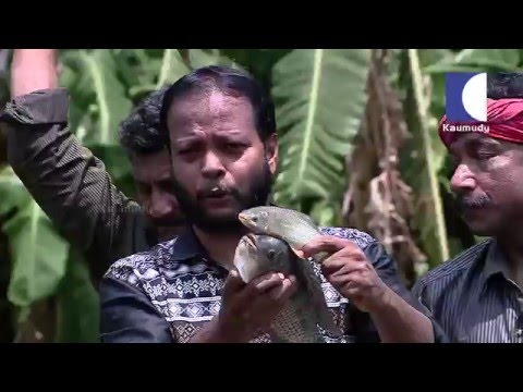 A walk to Summer Land Farm in kerala india | HARITHAM SUNDHARAM 18 03 2016 Part 02 | Kaumudy TV
